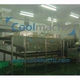 Chaîne de fabrication quick-frozen par soja