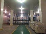冷蔵室の冷やされていた倉庫の歩行