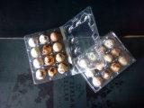 Горячие продавая пластичные подносы для 12PCS продырявят пакет яичек триперсток
