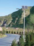 luz de rua solar da lâmpada do diodo emissor de luz de 8m 9m 10m Pólo 60W para a estrada