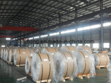 Bonne qualité avec des bobines d'aluminium de constructeur de la Chine de prix concurrentiel