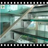 Claro/vidrio laminado templado Clolored para el edificio