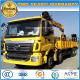 Grue 8X4 lourde d'Auman sur le camion 12 tonnes de grue de prix de camion
