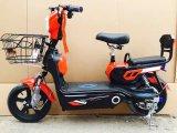 "48V 350W 14 "" 타이어 판매를 위한 전기 발동기 달린 자전거 자전거"