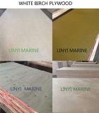 La mejor madera contrachapada del abedul de la calidad para los muebles/la decoración/el embalaje