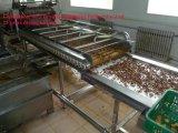 Промышленная машина для просушки бесконечной лента для фрукт и овощ
