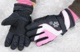 아이 스키 장갑 또는 아이 5의 핑거 장갑 아이들 스키 장갑 또는 아이들 겨울 장갑 또는 Detox 장갑 또는 Oekotex 장갑 또는 Mitten 스키 장갑 겨울 장갑