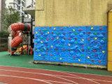 Kind-Innenfelsen-Kletternwand