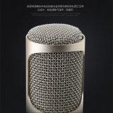 Hete Verkopende Draadloze Microfoon Bluetooth en Spreker voor Ios/Androïde