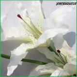가정 결혼식 훈장 도매업자를 위한 실크 가짜 흰 백합 인공 꽃