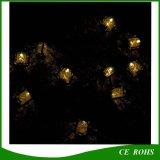 Petites lumières solaires de chaîne de caractères de cheval du noir 10PCS pour des vacances de Noël