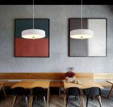 Creatief Eigentijds Aluminium die LEIDENE Lichten met de Certificatie van Ce hangen