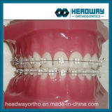 Corchete de cerámica del zafiro ortodóntico dental del Mbt