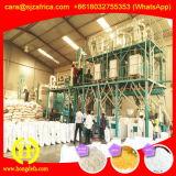 Farinha de milho do moinho do milho que faz a máquina