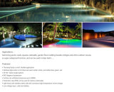 Punkt-Beleuchtung DES IP68 3W 12V 24V CREE Xbd LED helle Swimmingpool-Lampen-Garten-LED