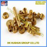 Parafuso prisioneiro de cobre do cobre da peça da precisão, conetor de bronze (HS-CS-009)