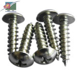 Qualitäts-kohlenstoffarmer Stahl-Oblate-Kopf-Selbstbohrende Schrauben