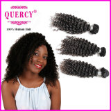 Hot Selling 8A Grade Hair Filipino Water Wave Cabelo humano 100% Virgin Hair Extention (W-113)