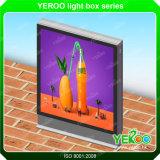 Caixa leve - caixa leve estando - que anuncia a caixa - caixa leve do diodo emissor de luz