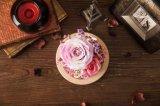 De Natuurlijke Echte Bloem van 100% Met de hand gemaakt voor de Gift van de Verjaardag van de Dag van de Valentijnskaart van de Decoratie van de Vakantie