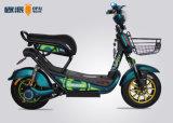 Ein Einzelsitz-intelligenter elektrischer Moped-Roller Digital Speedmeter mit Einkaufskorb