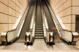 Niedriger Preis-und Geräusch-Rolltreppe