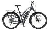 """27.5 """" [هيغقوليتي] كهربائيّة درّاجة درّاجة مع يخفى [بتّر/] [إ] [موونتين بيك] ([س-2702])"""