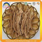 Fruiting тело Basswood одичалого Ganoderma Lucidum