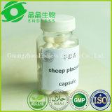 Benefício de Softgel da placenta dos carneiros para o envelhecimento e enrugar-se da pele
