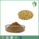 高品質4-Hydroxyisoleucine 1%、5%、10%の20%のコロハシードのエキス
