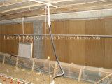 Système de refroidissement de garniture de refroidissement de l'équipement de ferme de fournisseur de la Chine