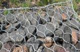Rete esagonale della costruzione della maglia di Sailin Gabion