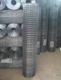 La rete metallica saldata galvanizzata per costruzione ha usato