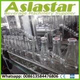 chaîne de production remplissante de jus de fruits complètement automatique de la bouteille 4000bph en verre