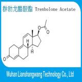 Wirkungsvolles injizierbares Trenbolone Azetat 10161-34-9 Finaplix für Muskel-Wachstum