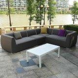 Mobilia stabilita della casa del salotto di modo di 2017 estati del giardino del patio del sofà esterno superiore per qualsiasi tempo del tessuto da arredamento