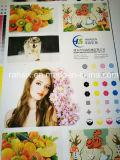 La alta precisión 6 colores empapela la impresora de Flexography
