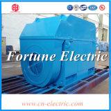 Hochspannung elektrischer Wechselstrom-Maschinen-Motor