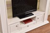 Cer genehmigte moderne einfache Fernsehapparat-Standplatz-Kamin-Ausgangsmöbel (346)