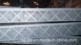 Piezas de precisión oxidadas del aluminio que trabajan a máquina de plata