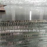 20mmのエレベーターの装飾のための厚いアルミニウム蜜蜂の巣のパネル