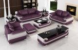 Самомоднейший живущий комплект софы отдыха мебели комнаты