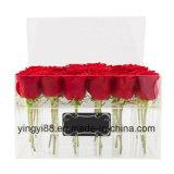 Le meilleur cadre acrylique de vente de Rose à vendre
