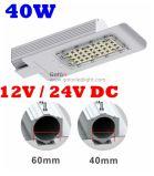 Indicatore luminoso di via solare luminoso eccellente di prezzi di fabbrica 110lm/W 12V 24V 36V 30W 60W 40W LED