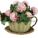 PE Rattan taza de té jardín flor con mango