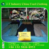 Calças tropicais de vestuário usadas americanas dos homens