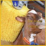 Le balai de lavage de vache améliorent la circulation sanguine de l'animal