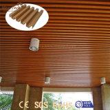 Het binnen Rekupereerbare Comité van het Plafond van pvc van de Decoratie Vuurvaste voor Verkoop