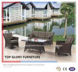 Всепогодная алюминиевая напольная установленная софа мебели сада (TG-2135)