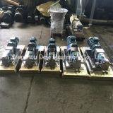 Pompe rotative del lobo di risanamento dell'acciaio inossidabile